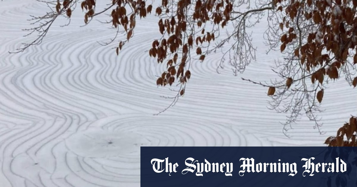 'Crop circle' patterns frozen into the surface of Alabama creek