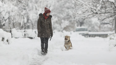A young woman walks her dog on a snowy day in Tehran, Iran. Such activity is frowned upon by conservative hard-liners who see it as a symptom of Western influence.
