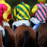 State racing ministers to discuss national horse traceability register