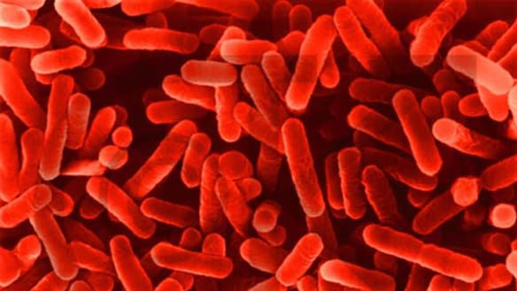 Fifth case of legionnaires' disease reported in western Sydney