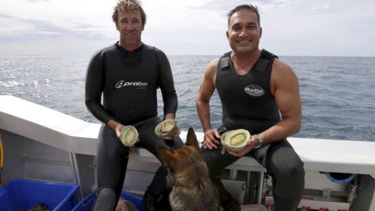 Peter Kuruvita fishing for abalone in Margaret River.