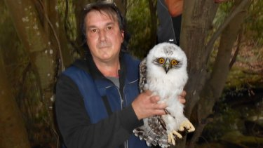 Michael Bianchino takes the Powerful Owl chick under his wing.