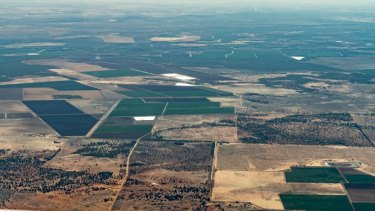 Cotton farms, including Kiameron, are green even as drought limits flows to the nearby Macquarie Marshes.