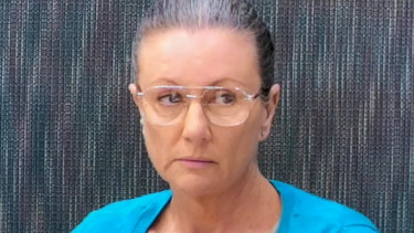 Kathleen Folbigg told the inquiry her diary entries were an expression of her frustration not an admission of guilt.
