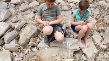 Eight-year old Cooper Moroni (left) and Riley, 11, inspect a dead Murray cod on the banks of the Darling River at Pooncarie.