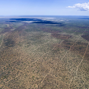 Aerial image of seismic lines about 45 kilometres east of Broome.