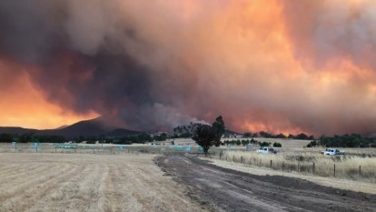 Devastation marches west across Alpine and Upper Murray