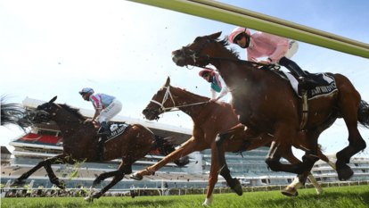 How can we stop the Melbourne Cup ending in tragedy?