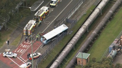 Sydney driver dies after car trapped under bus