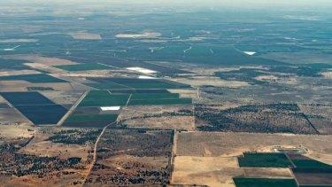 Cotton farms in February near Warren.