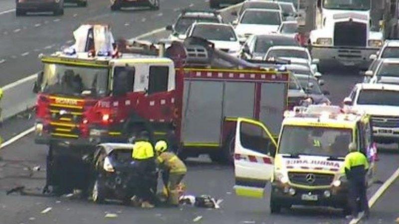 Woman fighting for life after Monash Freeway crash