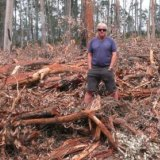 John Perkins, convener of Friends of Durras standing in logging debris near Batemans Bay.