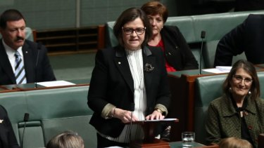 Ged Kearney delivers her first speech in the House of Representatives on Monday.