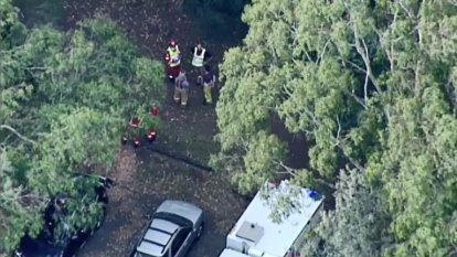 Operator insists Healesville caravan park has 'thorough maintenance program' after camper killed by falling tree branch