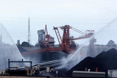 The chief executive of Port of Newcastle says the port must transition away from coal before it is too late.