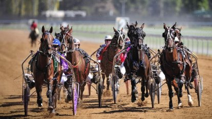 Harness Racing to return after steward cleared of COVID-19