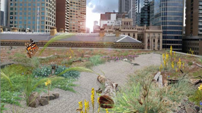Time for a green roof revolution in Melbourne