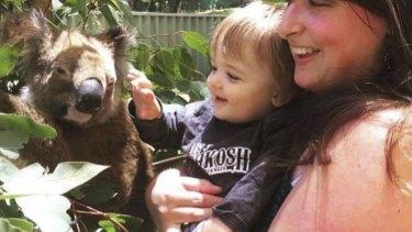 Orana the koala, pictured, was stolen from Adventure World on Saturday night.