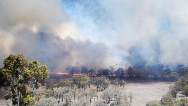 A bushfire in Maryvale,about 60 kilometres south-east of Toowoomba, on Friday.