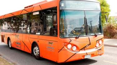 The woman has failed to claim hundreds of thousands of dollars in damages, after suffering a minor injury on a bus.