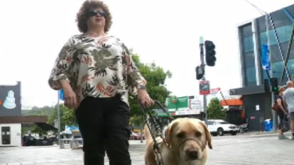 'Very distressing': Driver refuses to allow blind woman, guide dog on bus