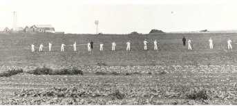 Prisoners tending fields of crops on St Helena Island around 1900.  The prison warders have black uniforms.
