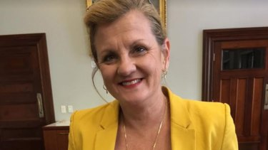 Redland mayor Karen Williams is petitioning the Queensland government to rethink the Eastern Busway project.