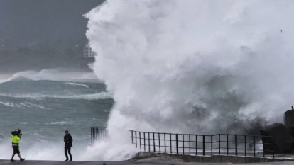 'Quite rare': Potentially damaging surf to pummel NSW coast this week