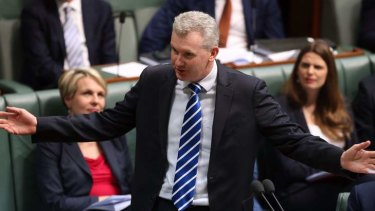 Labor environment spokesman Tony Burke.