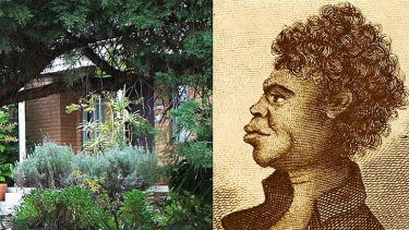 An obscured detail of the front garden of the home in Putney where Bennelong's grave has been found (left); and an illustration of Bennelong.