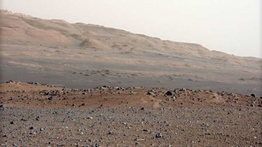 The surface of Mars is rich in sulfides, which are a major building block of stromatolites.