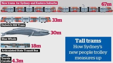 How Sydney's carriages measure up.  Graphic: Remi Bianchi