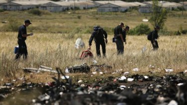 AFP officers search the MH17 crash site.