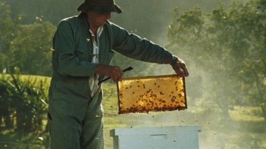 Adulterated honey is threatening Australia's bee hives.