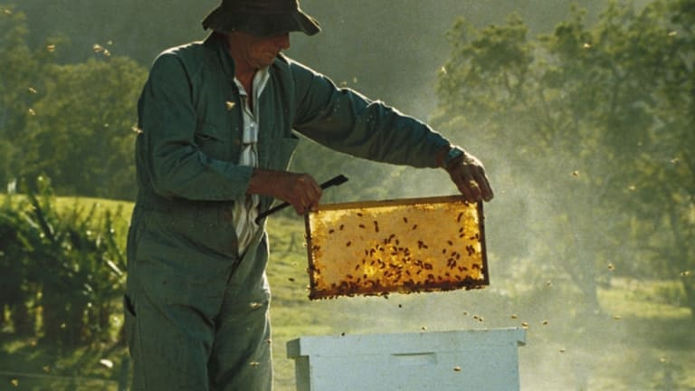 Capilano Honey boss Ben McKee says the proposed deal to take the company private is a good deal for shareholders.
