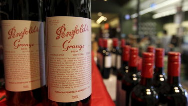 Shares in Treasury Wine, the owner of Penfolds, have plummeted on Wednesday in the wake of a profit downgrade.
