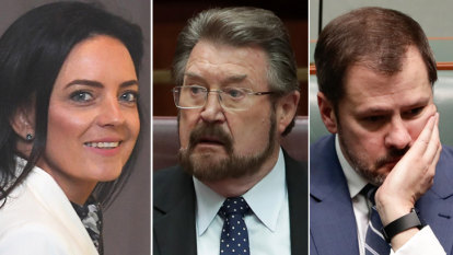 Derryn Hinch, Ed Husic dragged into BuzzFeed defence in Husar case