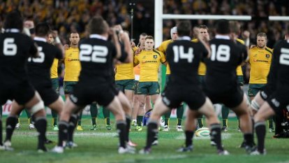 Christmas in quarantine: Fuming All Blacks reject Rugby Championship schedule