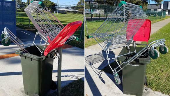 Green Bin Revolution For Melbourne S South East
