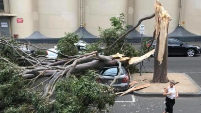 Thousands to remain without power until evening after freak winds