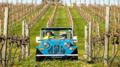 Clean dozen: The private Margaret River cellar doors open one weekend only