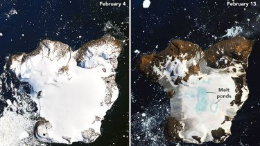 Melting on the ice cap of Eagle Island, Antarctica, during a warm period between February 4 and February  13, 2020, seen in images gathered using the Operational Land Imager (OLI) on Landsat 8.