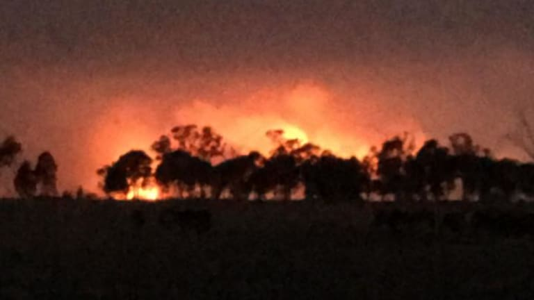 Picture of the Rosedale fire taken from the Princes Highway.