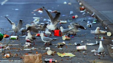 Researchers think seagulls may be picking up the pathogens while scavenging human waste.