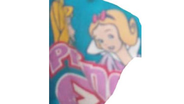"""Do you recognise this child's T-shirt? It has three Disney princesses on it with the logo """"Princess 3""""."""
