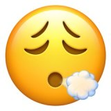 The 'face exhaling' emoji.