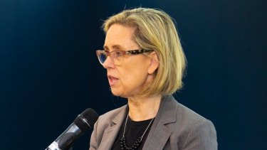 Child Protection Minister Simone McGurk says child protection workers are not overwhelmed by the number of cases