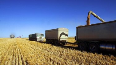 The drought has wrecked havoc with Graincorp's earnings.