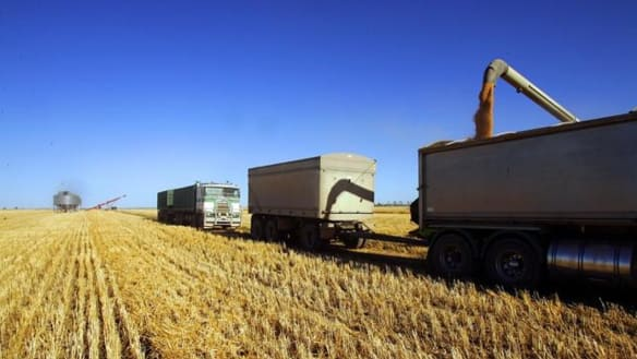 GrainCorp profit dries up, almost halving to $70 million on drought