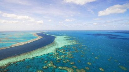 Legal protections urged as science gears up to aid Great Barrier Reef